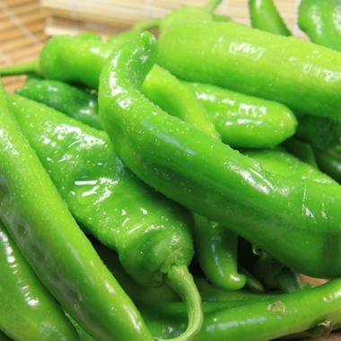 青椒 甜椒 菜椒